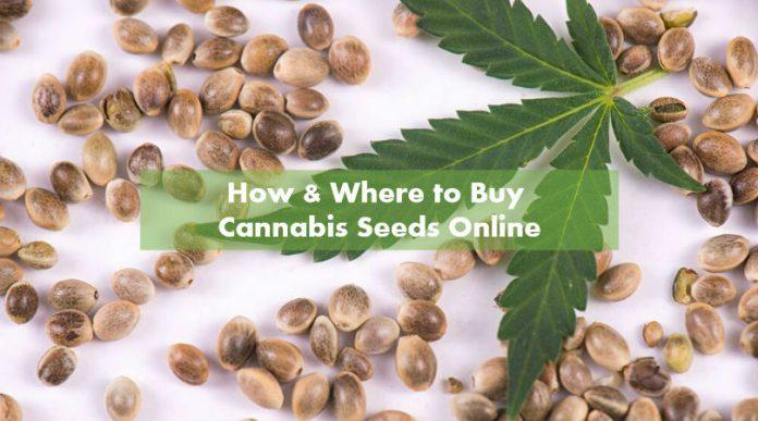 Weed Seeds Canada